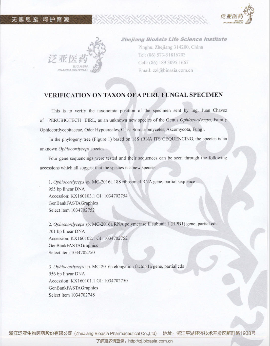 Verification on Taxon of a Perú Fungal Specimen (page 1)